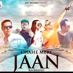 Dj Amit B and Dj Tarun – Chahe Meri Jaan