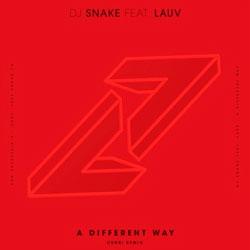 DJ Snake feat. Lauv - A Different Way (Curbi Remix)